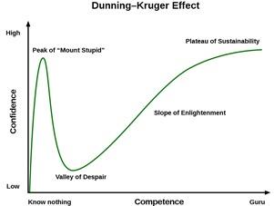 Dunning-Effect