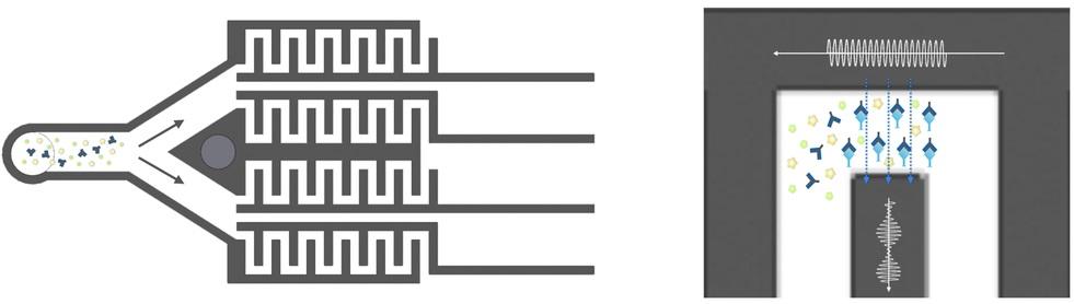Hoope Microfluidic