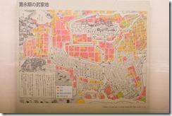 Tokyo Edo Museum (20)