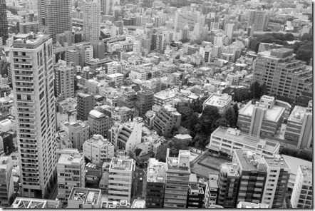 Tokyo view from Tokyo Tower (7)
