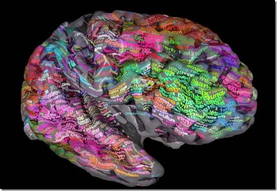 Brain Dictionary