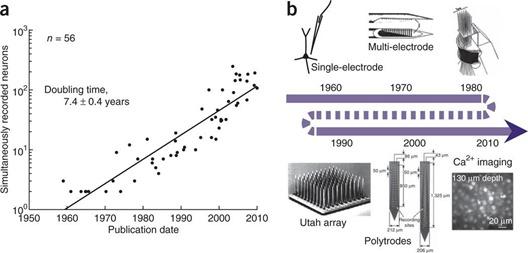 Evolution electrodes captation neurones cerveau