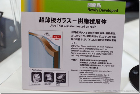 Nippon Electric Glass (12)