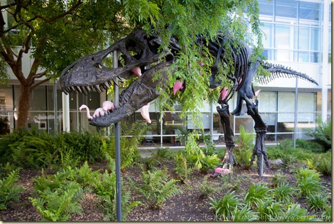 Dinosaure T-Rex chez Google